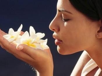 Perfumes florais importados