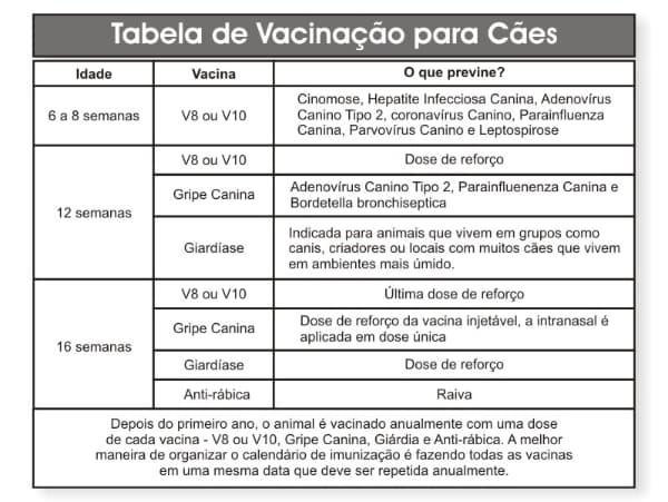 tabela de vacinas para caes