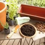 Como fazer uma horta em casa2
