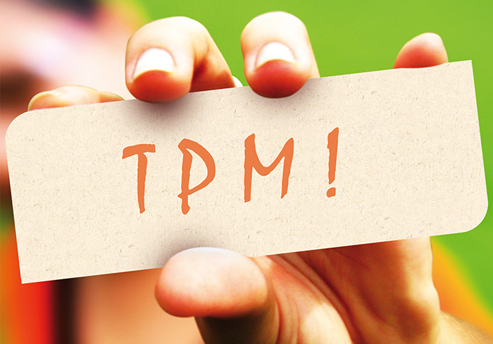 Ingerir ferro diminui risco de ter TPM